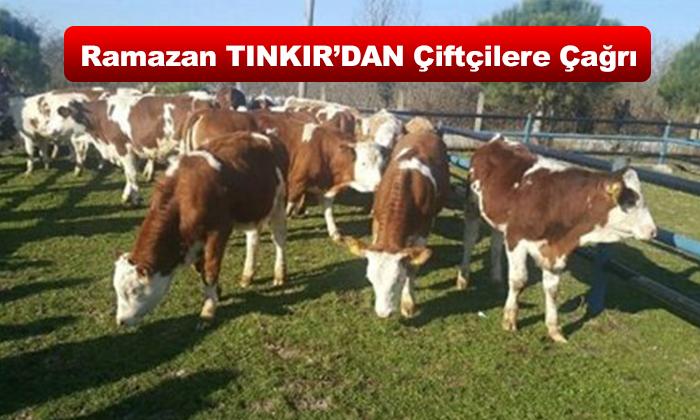 Uzman Tarım Danışmanı Ziraat Mühendisi Ramazan TINKIR'DAN Çiftçilere Çağrı