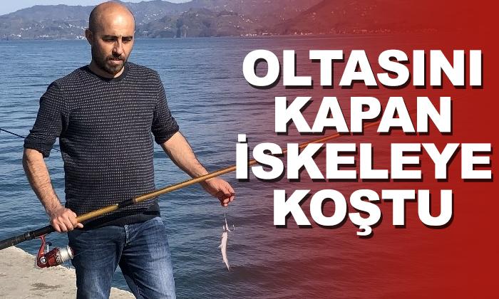 İskelede balık avı