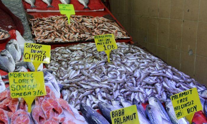 Sezonun son balıkları '10 lira'