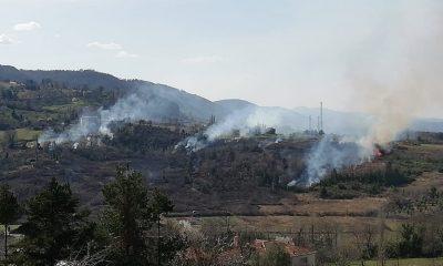 Türkeli ve Ayancık'ta orman yangını