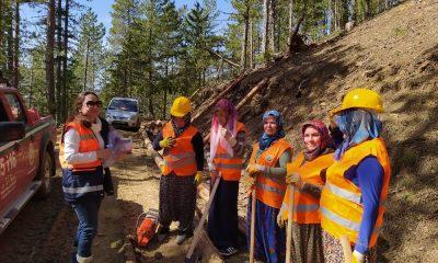"""""""Yılın kadını"""" Kunduz Ormanları'nda bulundu"""