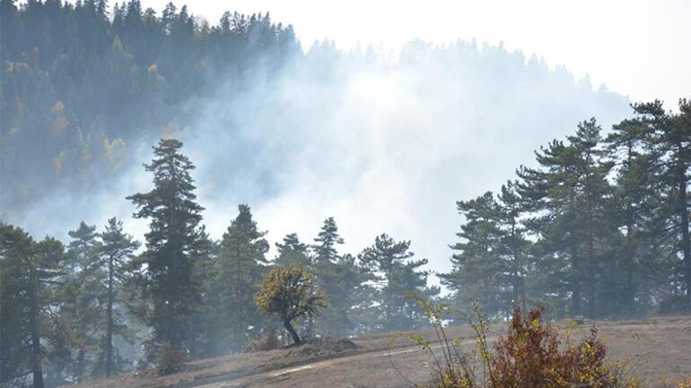 Boyabatta çıkan orman yangını kontrol altına alındı